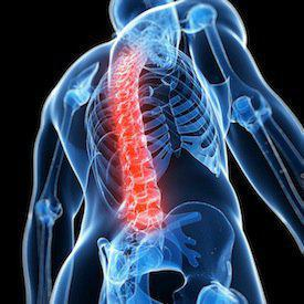 Chicago spinal cord injury attorney, spinal cord injuries, spinal cord injury, Chicago car accident attorneys, physical therapy, traumatic injur